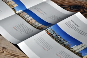 BSR Geschäftsbericht 2012